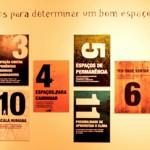 12-criterios