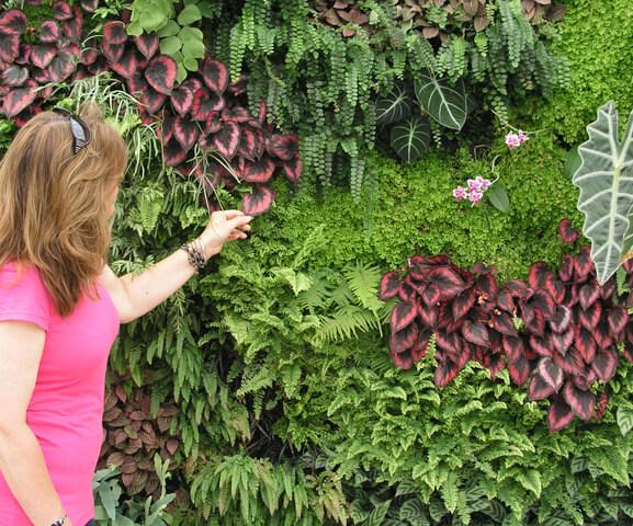 jardim-vertical-fazer