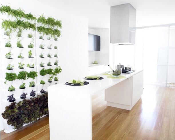 jardim-vertical-na-cozinha
