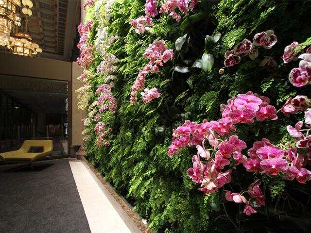 jardim-vertical-orquideas